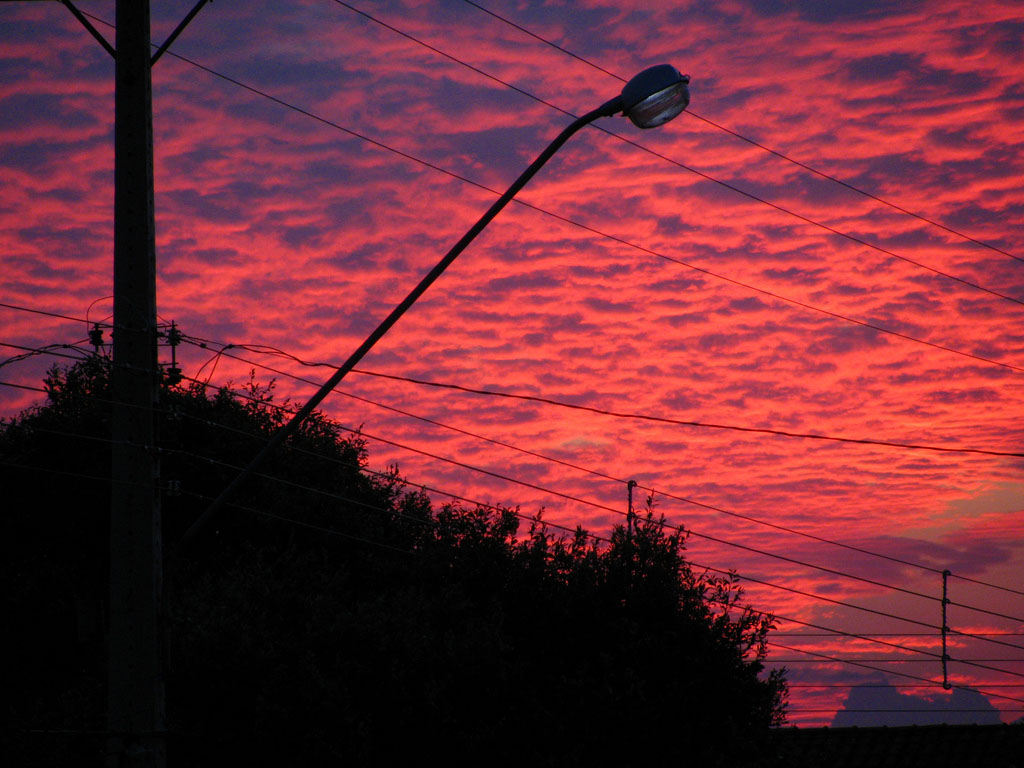 pink sky11 Why Does the Sky Looks Pink