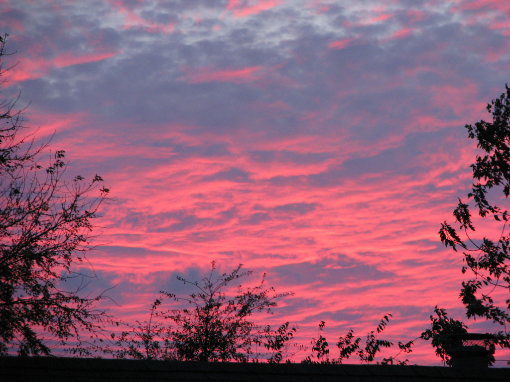 pink sky3 Why Does the Sky Looks Pink
