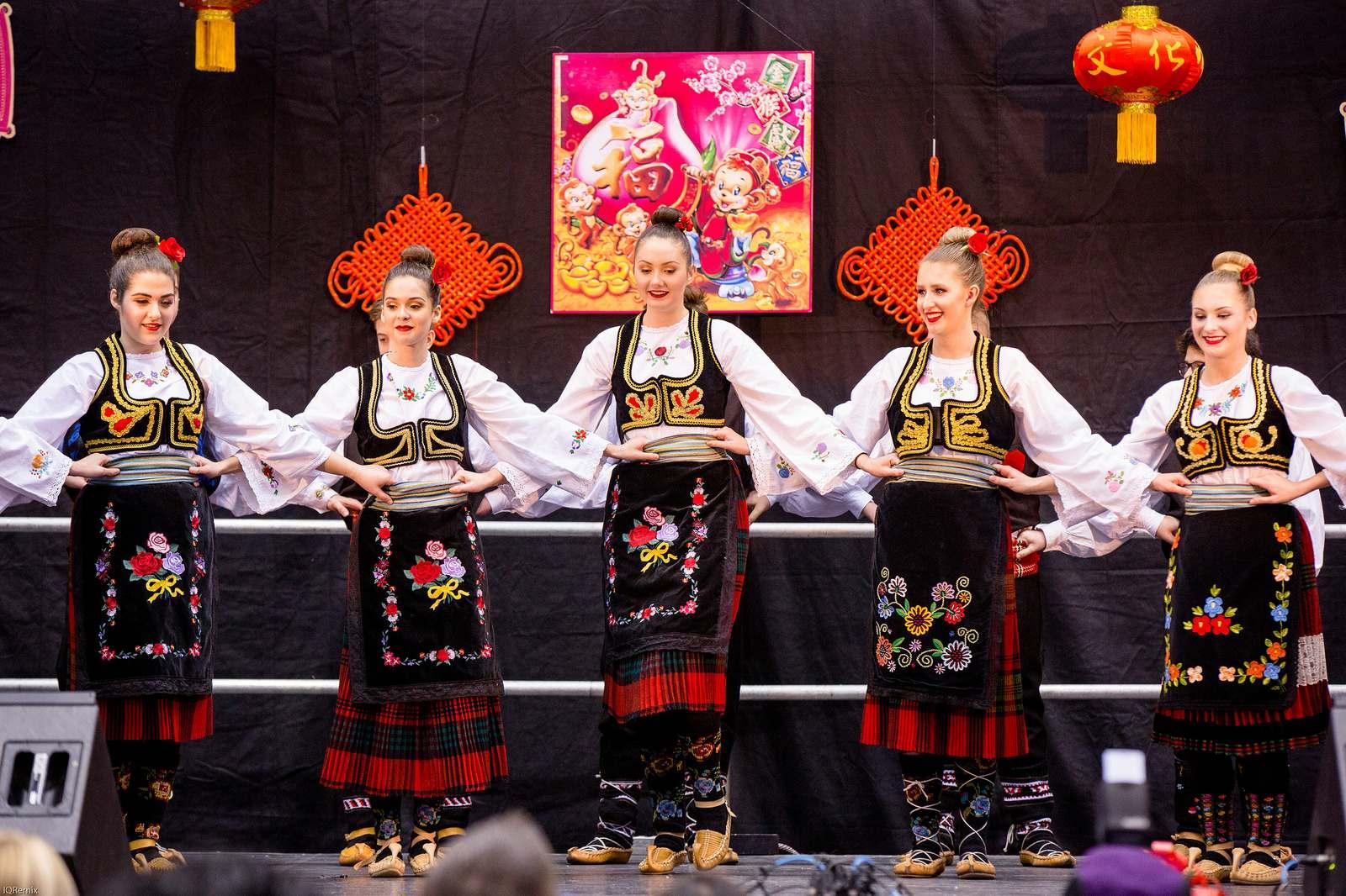 lunar new year9 Lunar Chinese New Year 2016 in Edmonton
