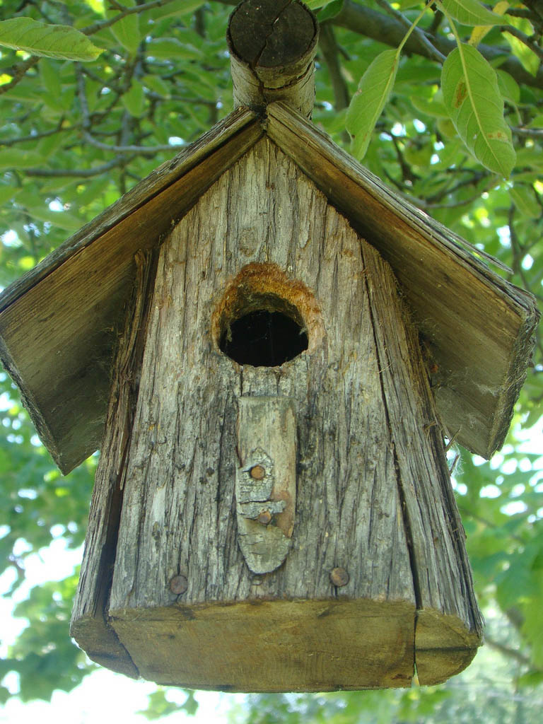 bird house17 Smarten Up Your Garden with Stylish Bird House