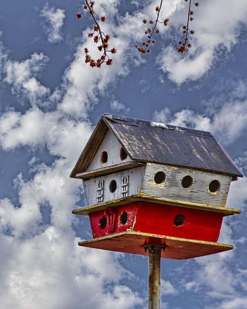 bird house4 Smarten Up Your Garden with Stylish Bird House