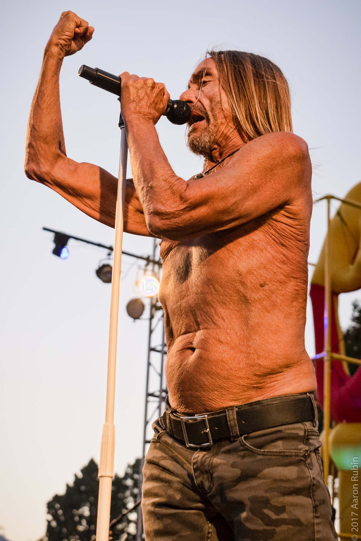 iggy pop2 Iggy Pop at Burger Boogaloo 2017