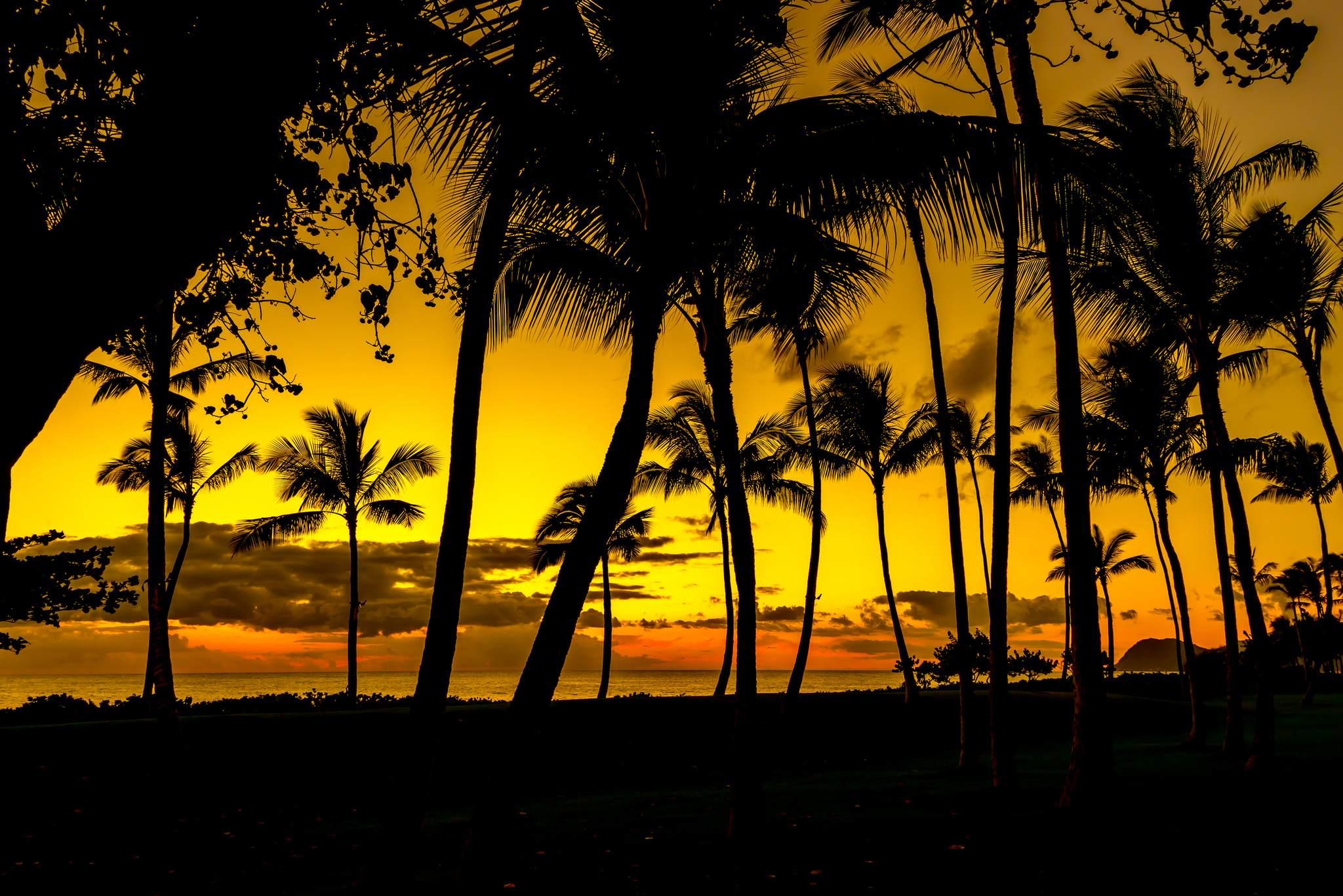 oahu wallpapers9 Aloha Oahu