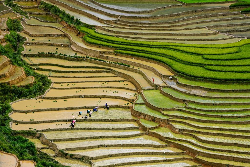mu cang chai1 Amazing Place   Rice Terrace Fields in Mu Cang Chai, Vietnam
