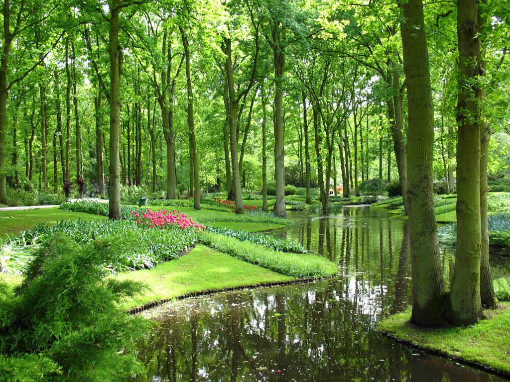keukenhof9 Colorful Keukenhof Gardens in Netherlands