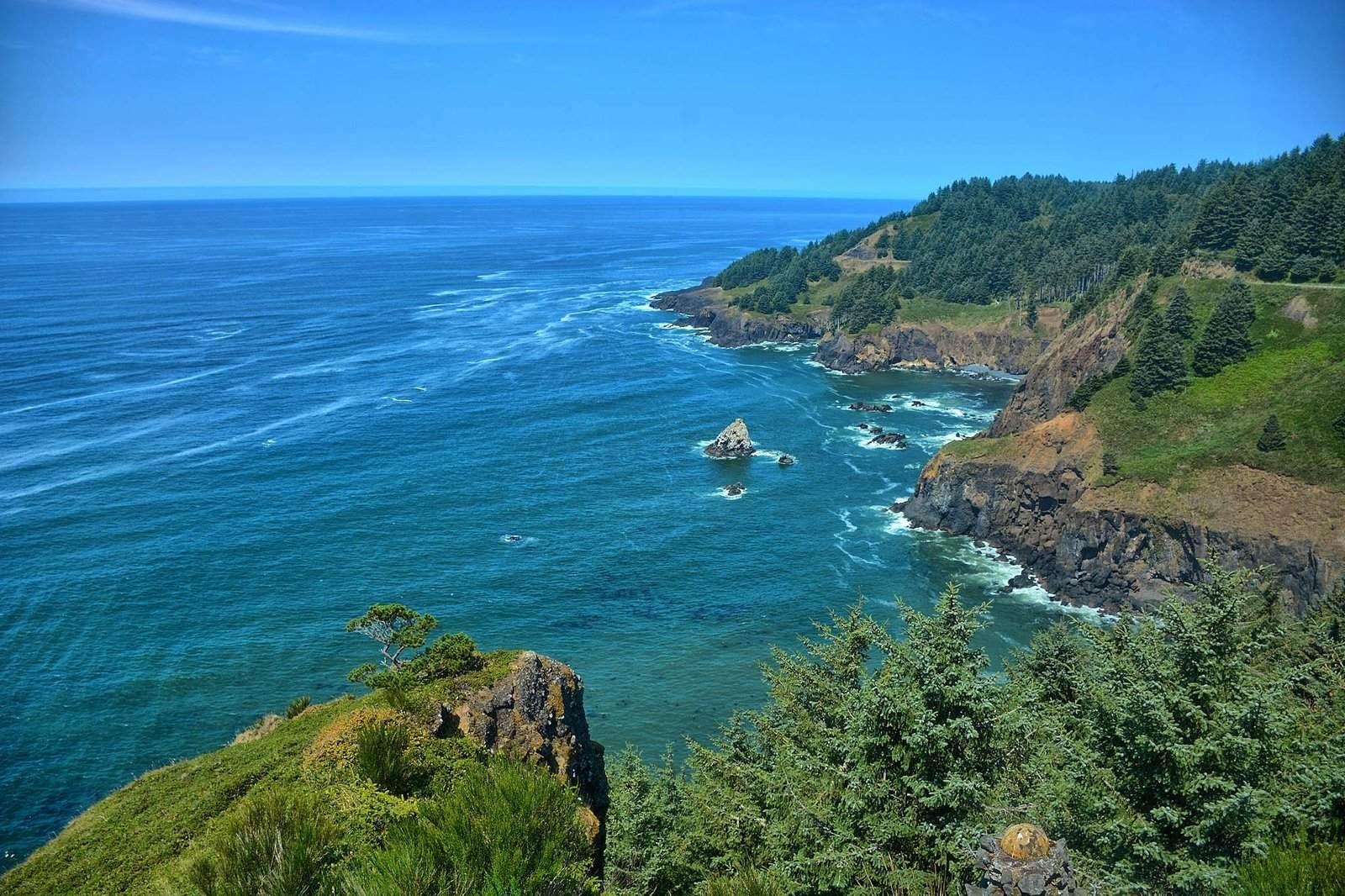 oregon coast5 Day at Oregon Coast