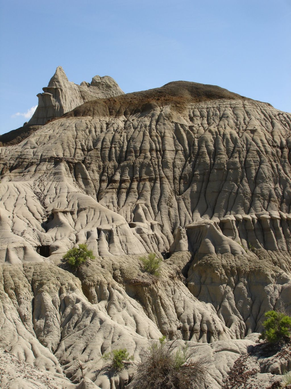 dinosaur provincial park1 Dinosaur Provincial Park   The Richest Dinosaur Fossil Site