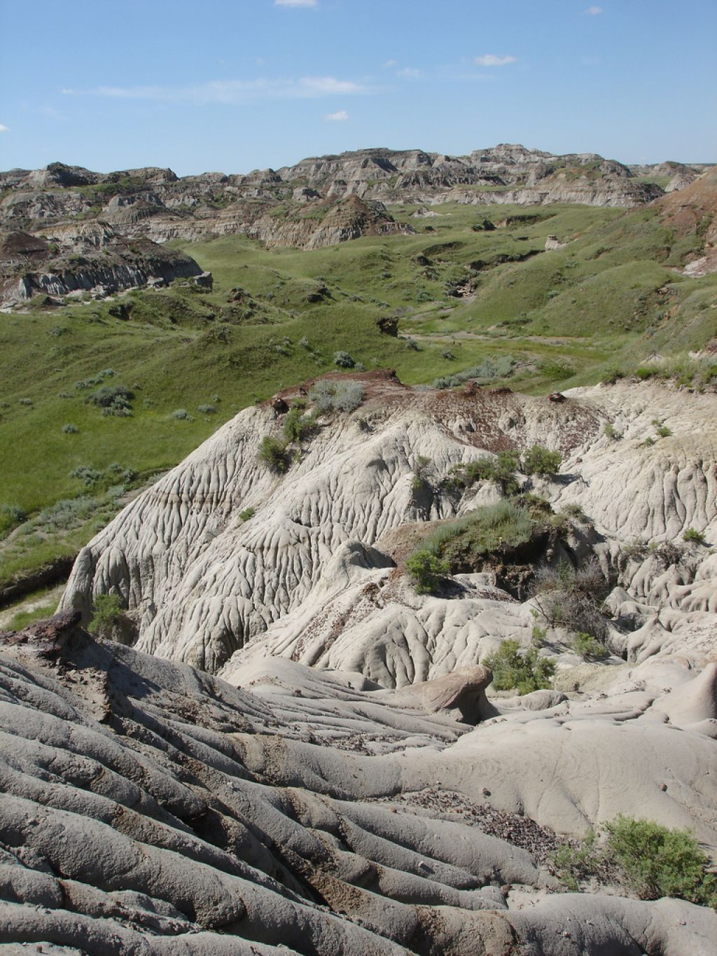 dinosaur provincial park11 Dinosaur Provincial Park   The Richest Dinosaur Fossil Site