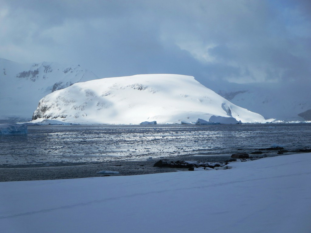 antarctica3 A Land of White   Cuverville Island, Antarctica by David Stanley