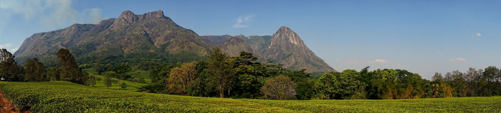 mulanje mountain6 Magnificent Mulanje Mountain and Tea Estates