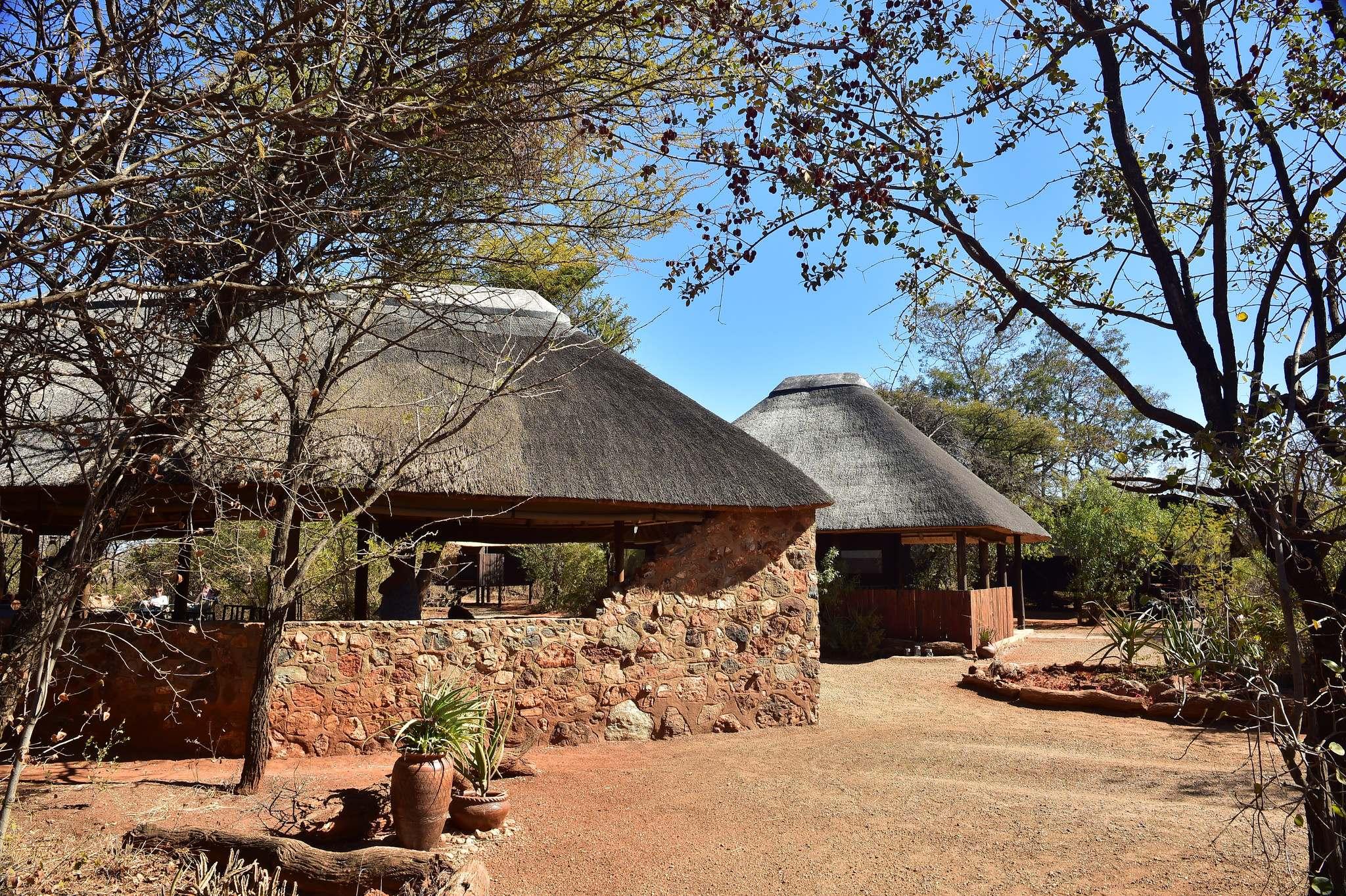 mosetlha bush camp6 Mosetlha Bush Camp at Madikwe Game Reserve