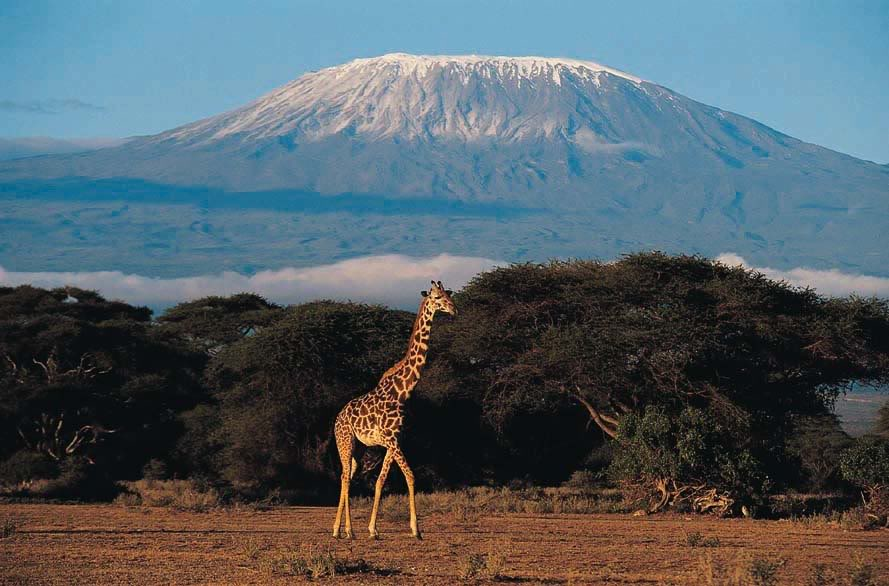 kilimanjaro Mount Kilimanjaro   The Roof of Africa