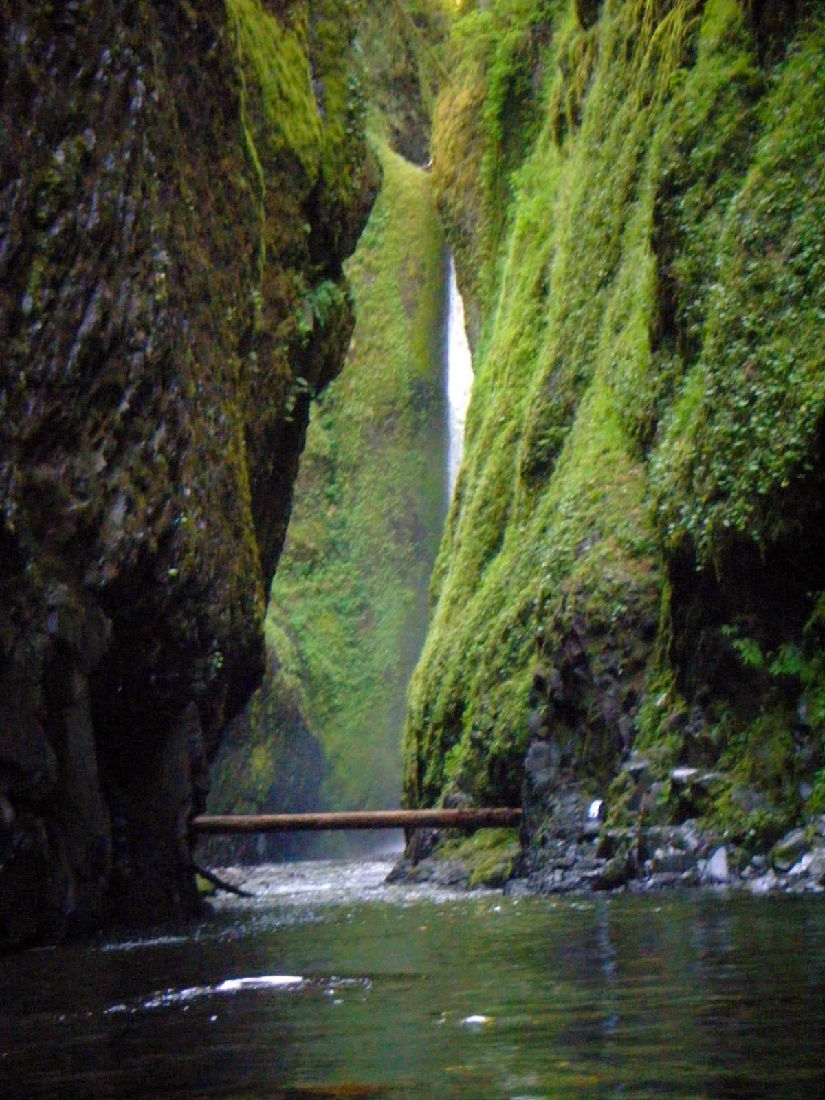 oneonta Oneonta Gorge Hike, Oregon