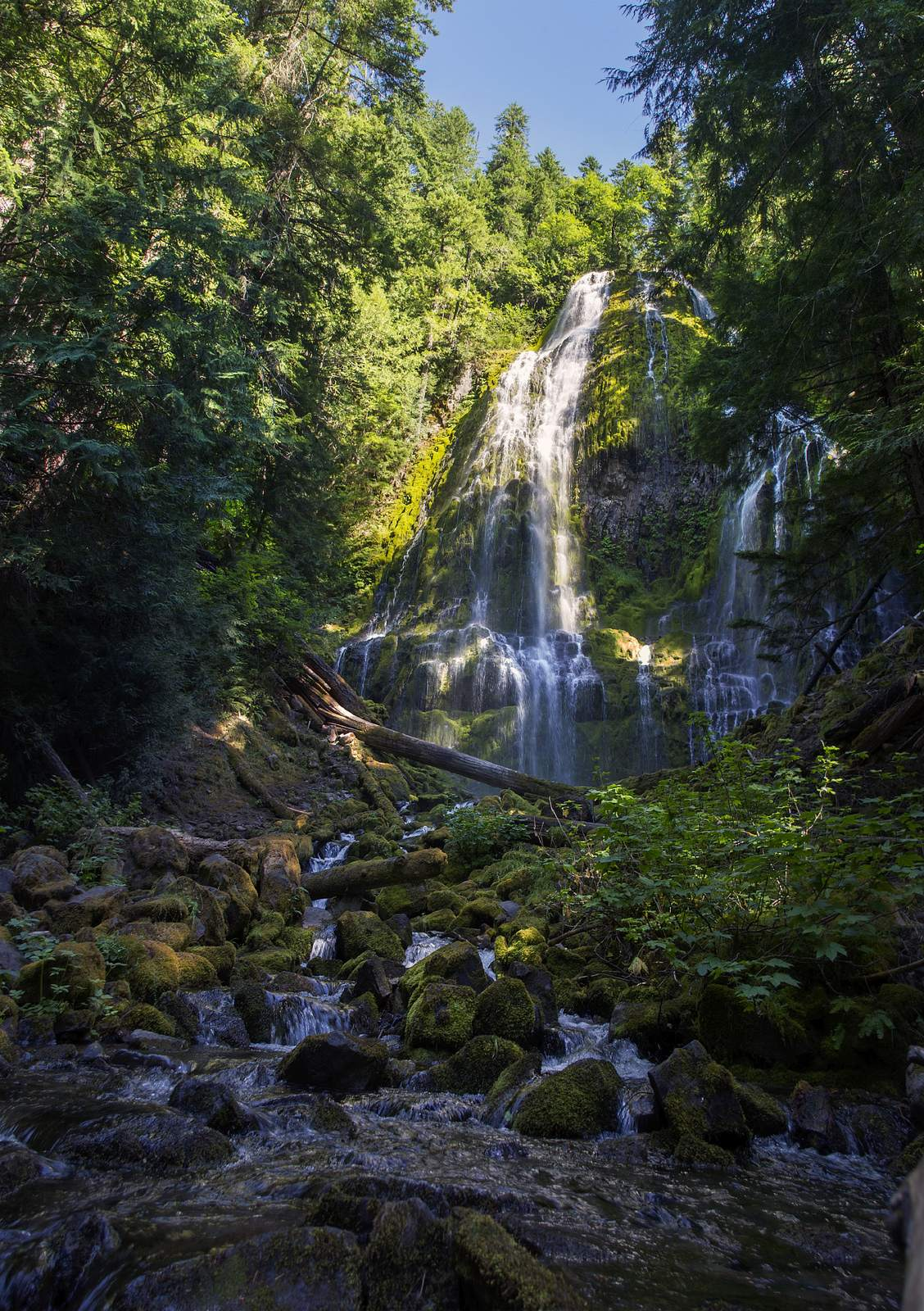 proxy falls3 Proxy Falls   Oregon Cascades