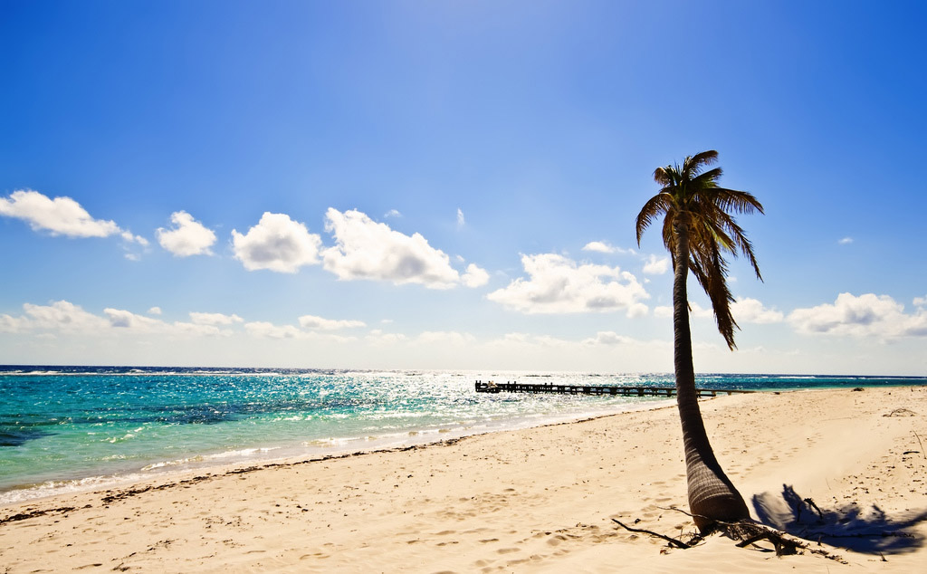 cayman islands Reasons to Visit Cayman Islands