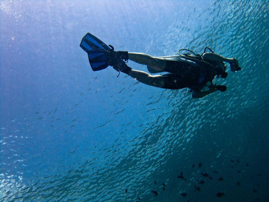 scuba diving17 Scuba Diving in Beatiful Waters of Indonesia