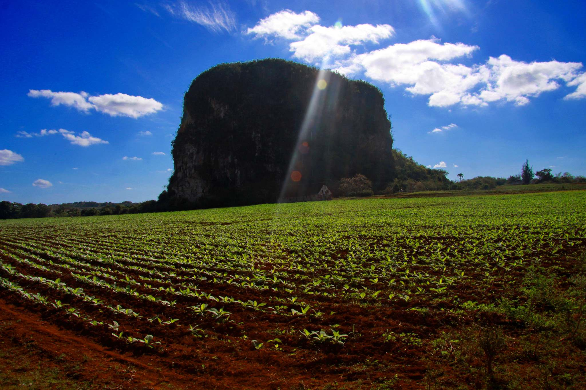 vinales valley Vinales Valley   UNESCO World Heritage Site