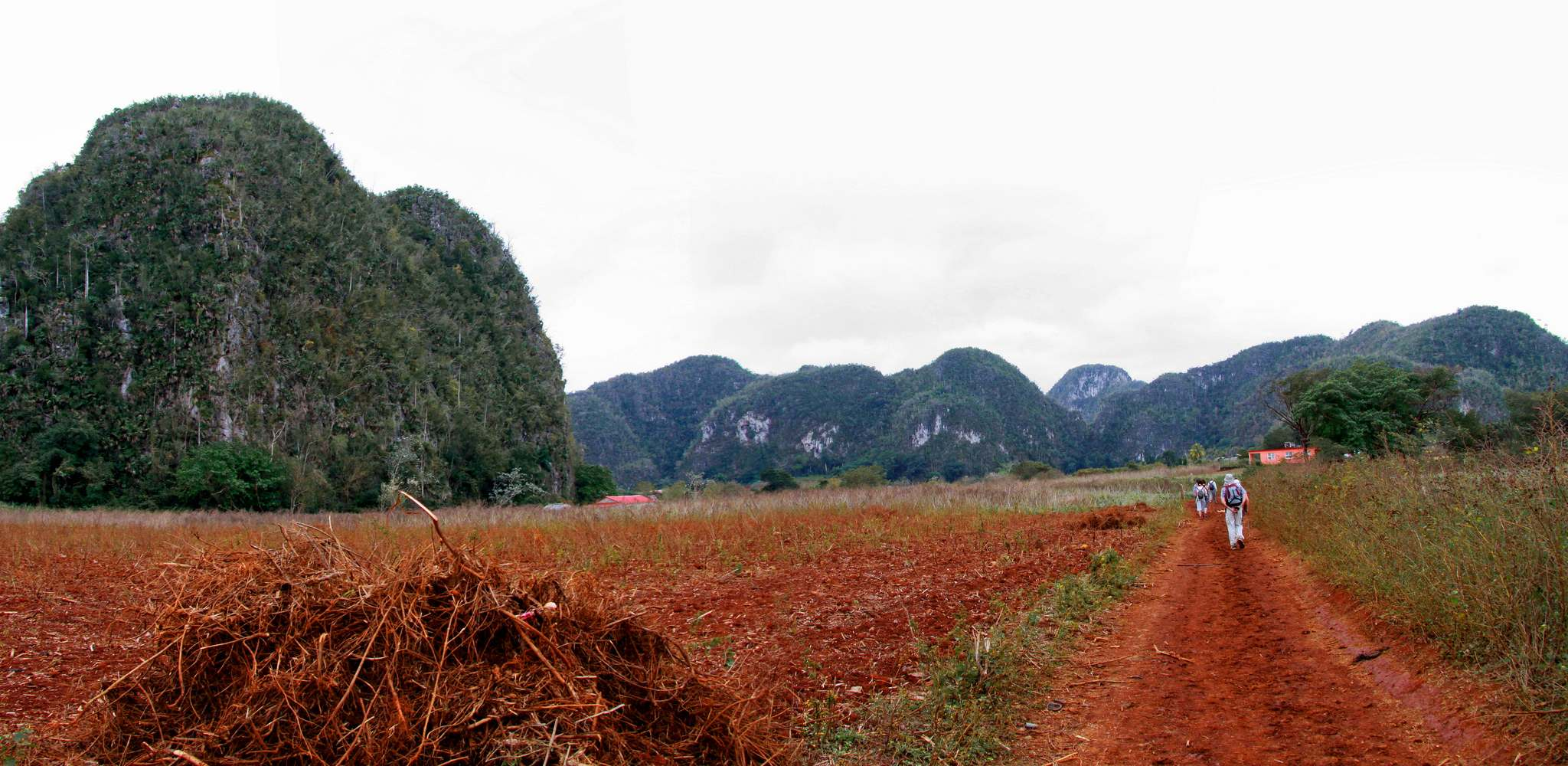 vinales valley10 Vinales Valley   UNESCO World Heritage Site