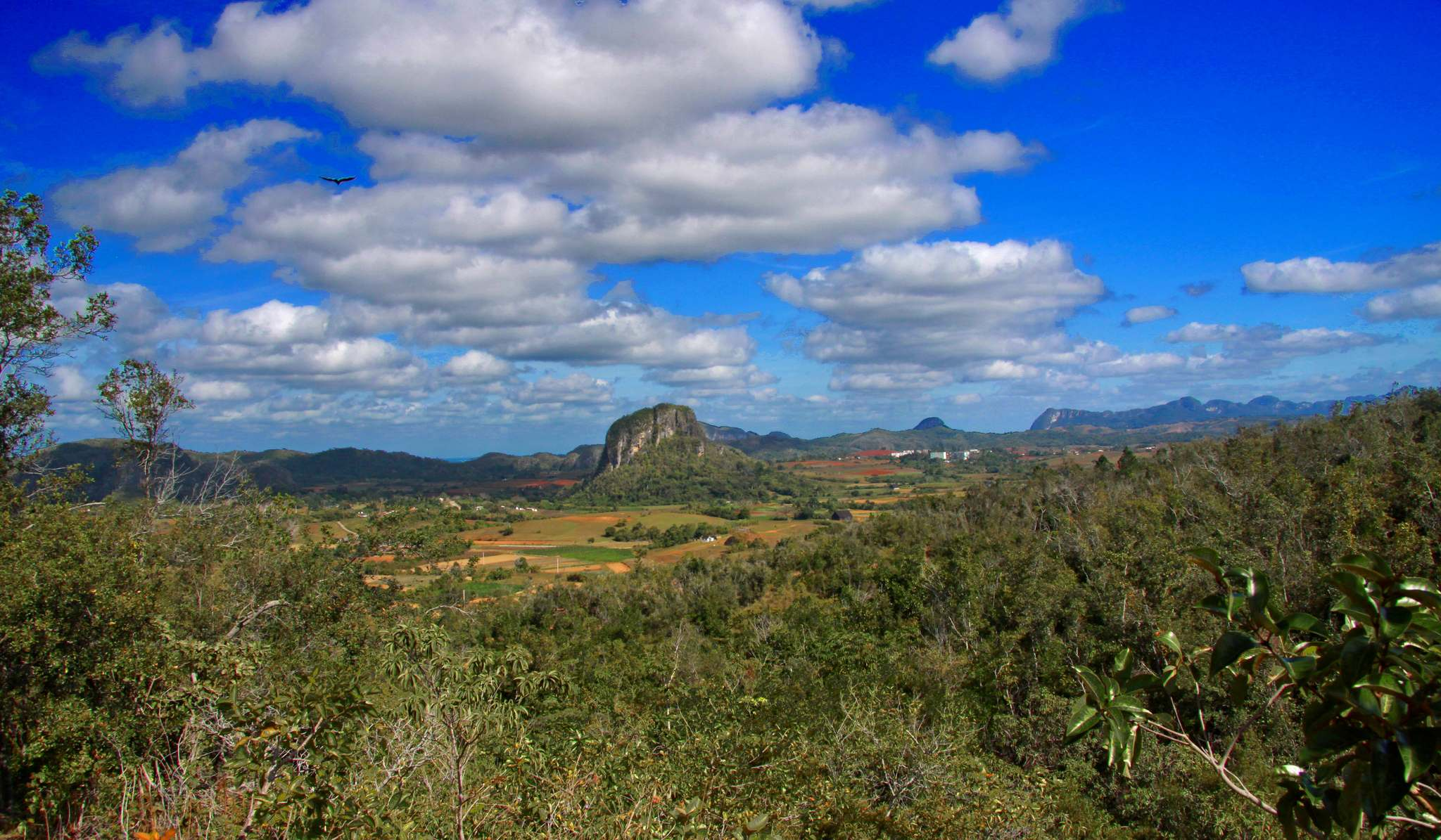 vinales valley4 Vinales Valley   UNESCO World Heritage Site