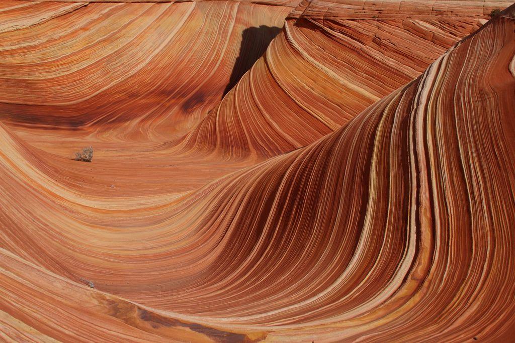 wave1 The Wave aka North Coyote Butte, Arizona
