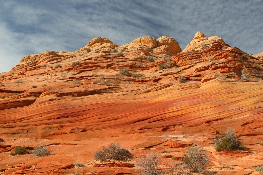 wave3 The Wave aka North Coyote Butte, Arizona