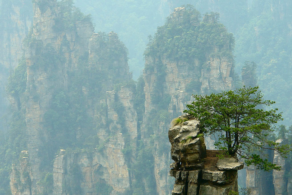 zhangjiajie3 Zhangjiajie   National Forest Park That Inspired Avatar