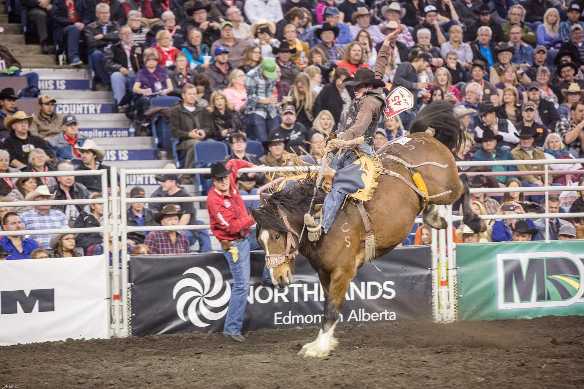 finals rodeo11 Canadian Finals Rodeo in Edmonton