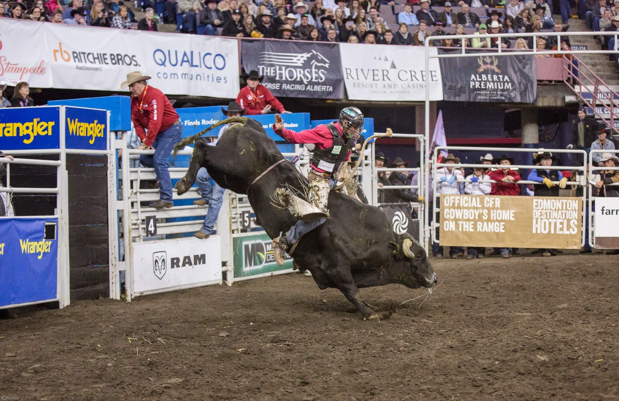 finals rodeo3 Canadian Finals Rodeo in Edmonton