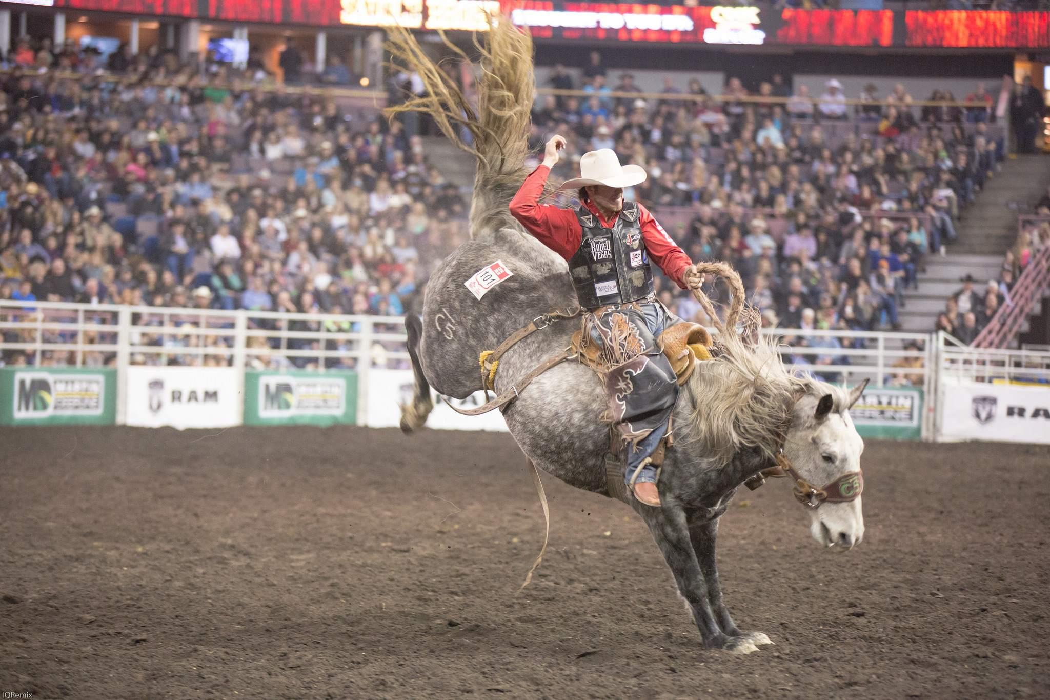 finals rodeo7 Canadian Finals Rodeo in Edmonton