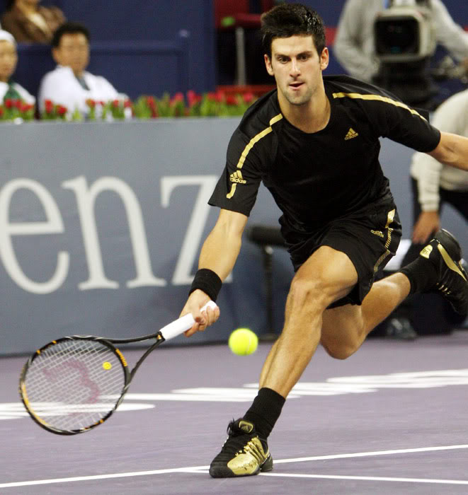 novak djokovic7 Next ATP Number One   Novak Djokovic