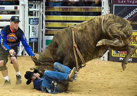 bull riding Little Boy Dreams About Pro Bull Rider