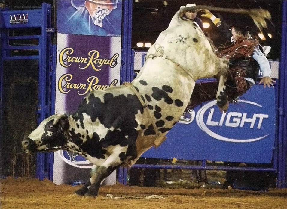 bull riding15 Little Boy Dreams About Pro Bull Rider