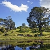 Hobbiton Movie Set in Matamata, North Island of New Zealand