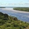 Top Facts about Amazon Rainforest