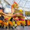 Lunar Chinese New Year 2016 in Edmonton