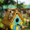 Smarten Up Your Garden with Stylish Bird House