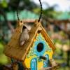 Smarten Up Your Garden with Stylish Bird House