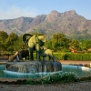 Magnificent Mulanje Mountain and Tea Estates