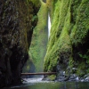 Oneonta Gorge Hike, Oregon