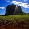 Vinales Valley – UNESCO World Heritage Site