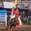 Canadian Finals Rodeo in Edmonton