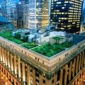 Innovative Green Roofs for Healt...