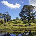 Hobbiton Movie Set in Matamata, ...