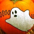 Painted Halloween Pumpkins &#821...