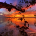 Amazing Collection of Sunset Pho...