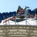 World Class Ocean Park in Hong K...