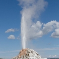 Lower Geyser Basin Yellowstone N...