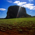 Vinales Valley – UNESCO Wo...