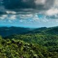 El Yunque Rain Forest in Puerto ...