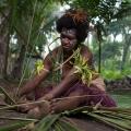 Vanuatu – Traditional Paci...